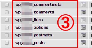 データベースの表示例「wp_任意の文字列」の場合